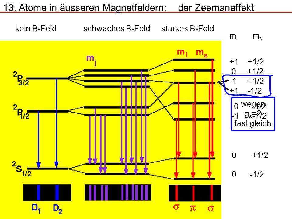 13. Atome in äusseren Magnetfeldern:der Zeemaneffekt kein B-Feldschwaches B-Feldstarkes B-Feld m l m s +1 +1/2 0 +1/2 -1 +1/2 +1 -1/2 wegen g s =2 fas