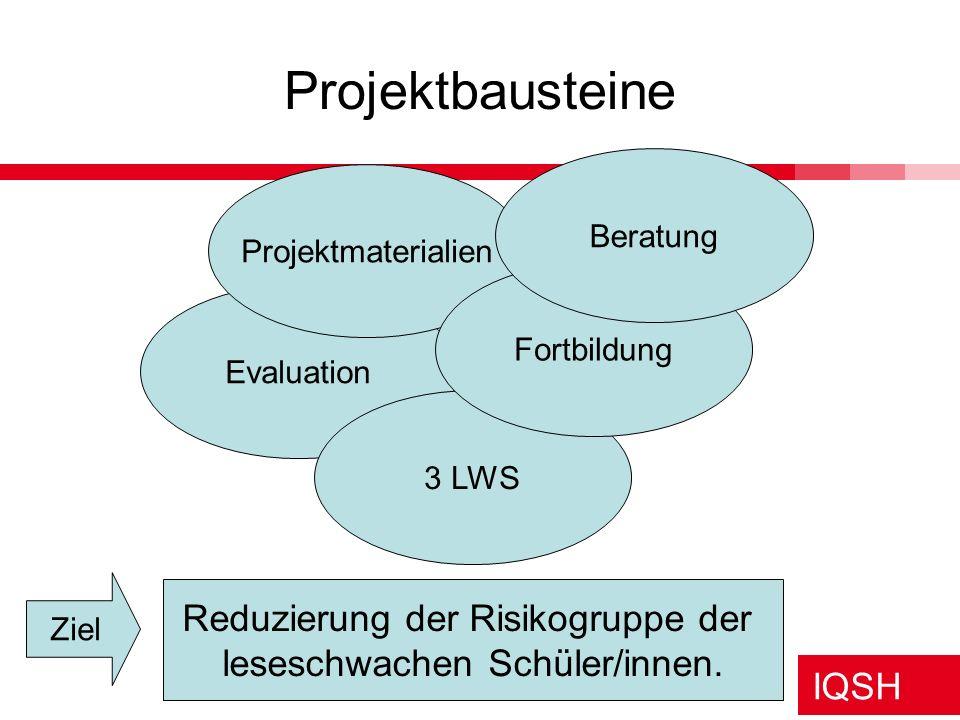 IQSH Projektbausteine Evaluation 3 LWS Projektmaterialien Fortbildung Beratung Reduzierung der Risikogruppe der leseschwachen Schüler/innen. Ziel