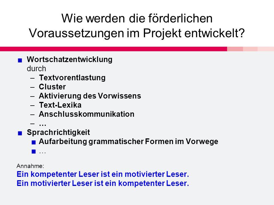 Wie werden die förderlichen Voraussetzungen im Projekt entwickelt.