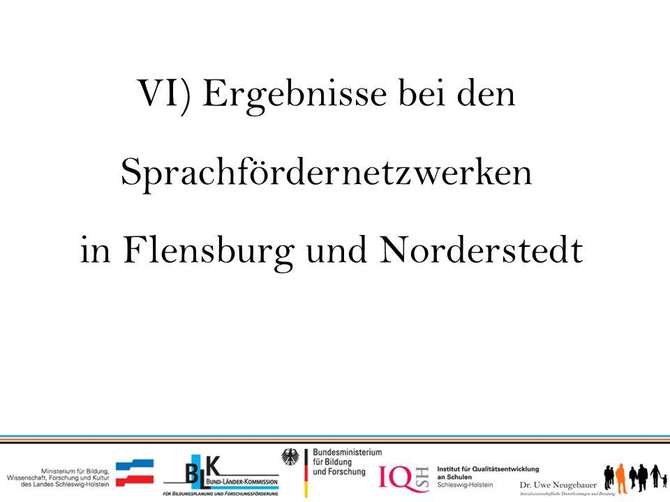 VI) Ergebnisse des Sprachfördernetzwerks Flensburg