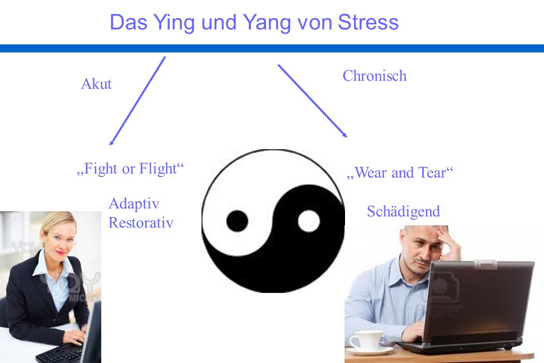 Das Ying und Yang von Stress Adaptiv Restorativ Wear and Tear Schädigend Fight or Flight Akut Chronisch