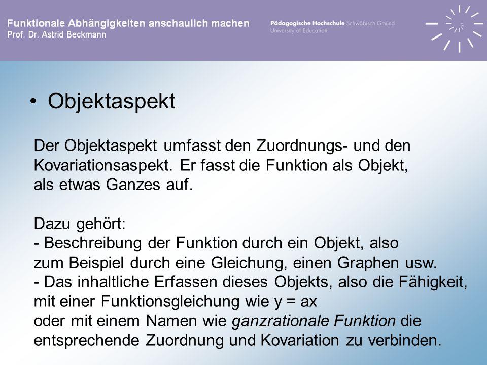 Objektaspekt Der Objektaspekt umfasst den Zuordnungs- und den Kovariationsaspekt. Er fasst die Funktion als Objekt, als etwas Ganzes auf. Dazu gehört: