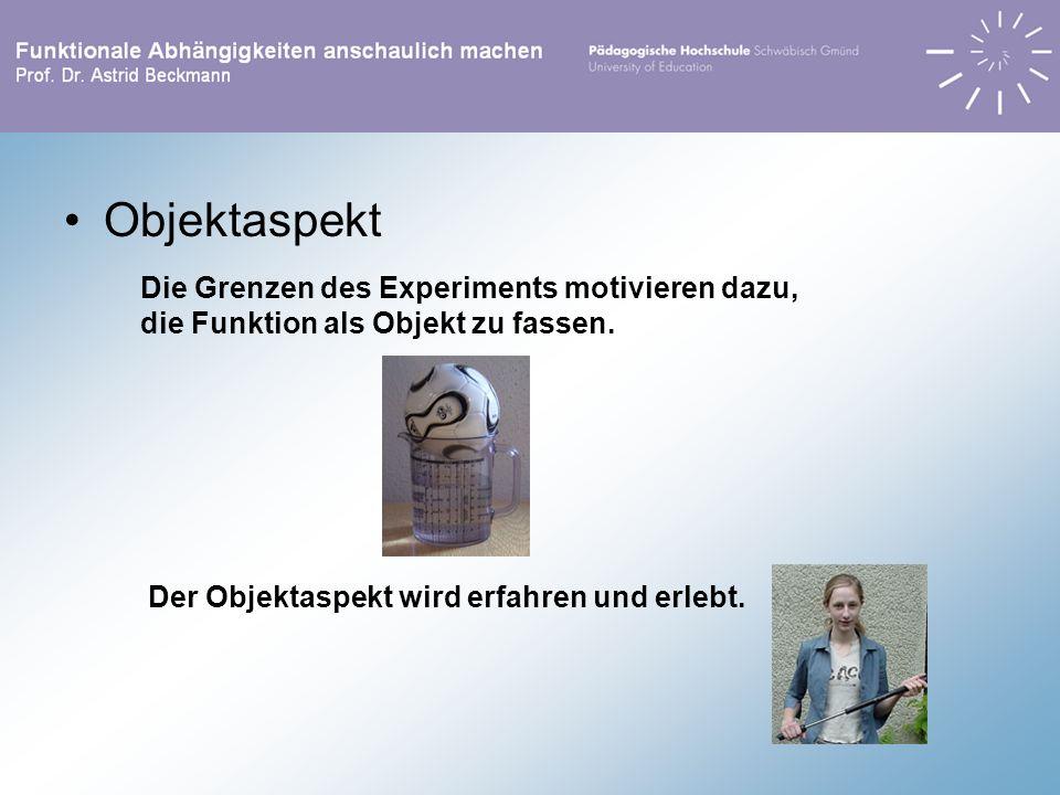 Objektaspekt Die Grenzen des Experiments motivieren dazu, die Funktion als Objekt zu fassen. Der Objektaspekt wird erfahren und erlebt.