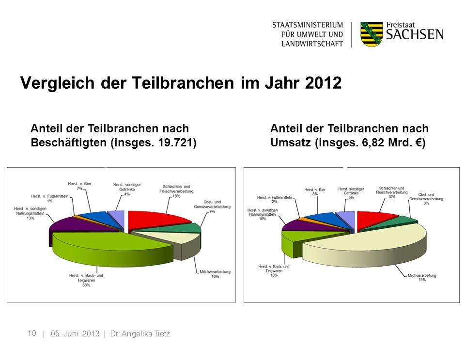 10 Vergleich der Teilbranchen im Jahr 2012 | 05. Juni 2013 | Dr. Angelika Tietz Anteil der Teilbranchen nach Beschäftigten (insges. 19.721)h Beschäfti