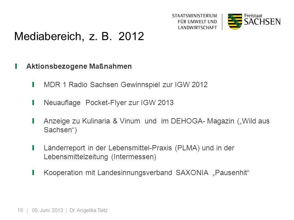 15 Mediabereich, z. B. 2012 Aktionsbezogene Maßnahmen MDR 1 Radio Sachsen Gewinnspiel zur IGW 2012 Neuauflage Pocket-Flyer zur IGW 2013 Anzeige zu Kul
