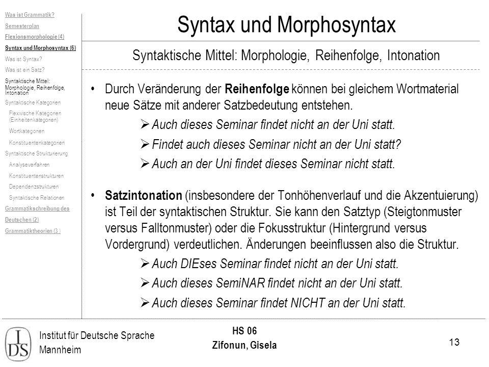 13 Institut für Deutsche Sprache Mannheim HS 06 Zifonun, Gisela Was ist Grammatik? Semesterplan Flexionsmorphologie (4) Syntax und Morphosyntax (6) Wa
