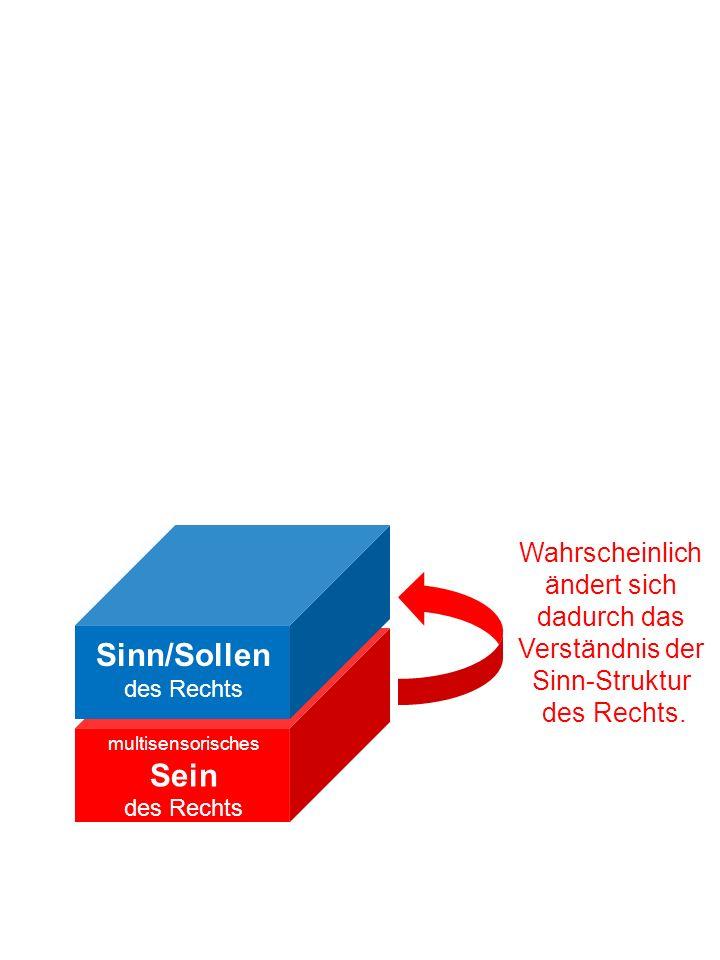 multisensorisches Sein des Rechts Sinn/Sollen des Rechts Wahrscheinlich ändert sich dadurch das Verständnis der Sinn-Struktur des Rechts.