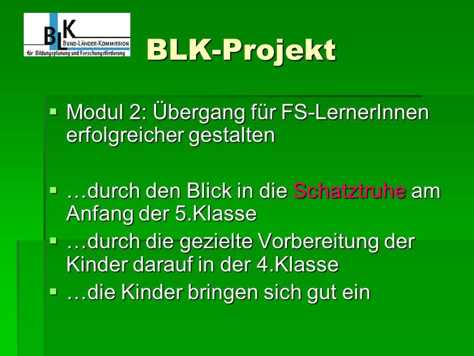 BLK-Projekt Modul 2: Übergang für FS-LernerInnen erfolgreicher gestalten Modul 2: Übergang für FS-LernerInnen erfolgreicher gestalten …durch den Blick