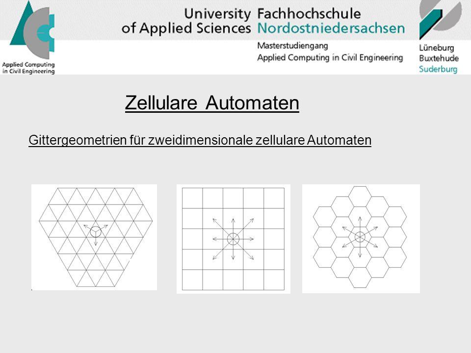 Zellulare Automaten Gittergeometrien für zweidimensionale zellulare Automaten
