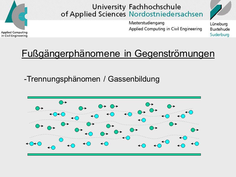 Fußgängerphänomene in Gegenströmungen -Trennungsphänomen / Gassenbildung
