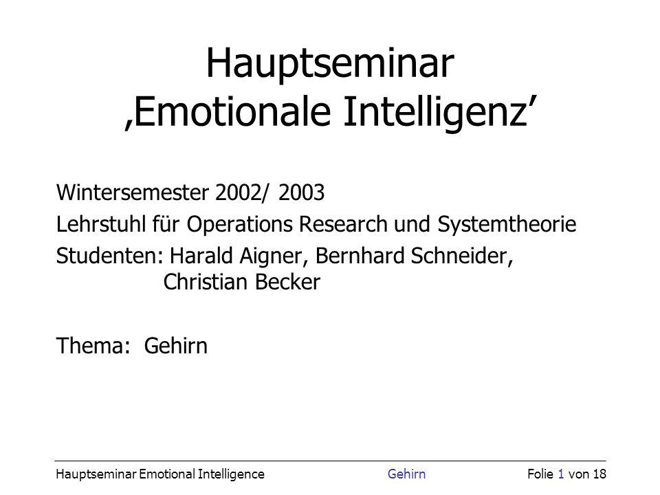 Hauptseminar Emotional Intelligence GehirnFolie 1 von 18 Hauptseminar Emotionale Intelligenz Wintersemester 2002/ 2003 Lehrstuhl für Operations Resear
