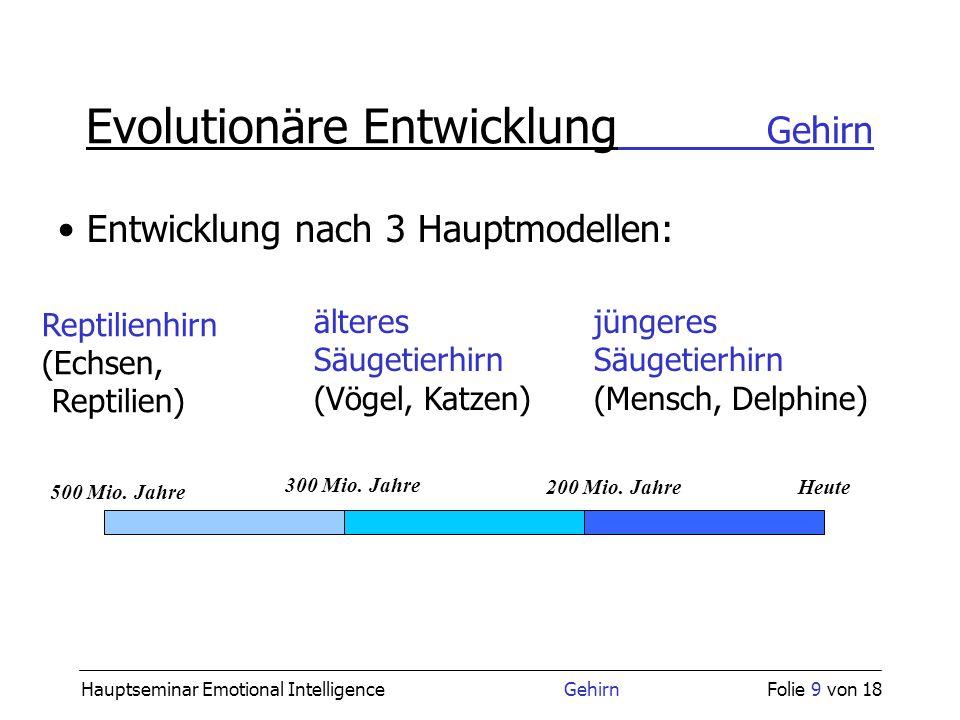 Hauptseminar Emotional Intelligence GehirnFolie 9 von 18 Evolutionäre Entwicklung Gehirn jüngeres Säugetierhirn (Mensch, Delphine) älteres Säugetierhi
