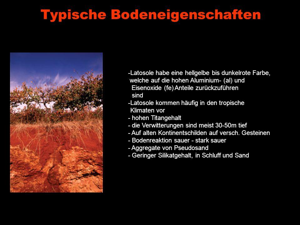 Typische Bodeneigenschaften -Latosole habe eine hellgelbe bis dunkelrote Farbe, welche auf die hohen Aluminium- (al) und Eisenoxide (fe) Anteile zurüc