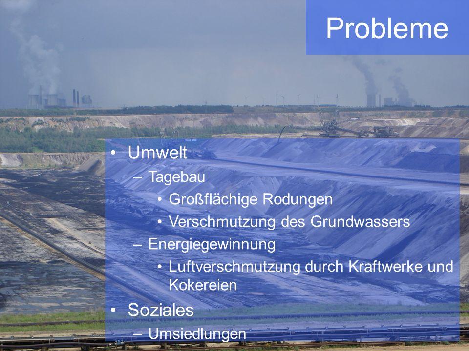 Probleme Umwelt –Tagebau Großflächige Rodungen Verschmutzung des Grundwassers –Energiegewinnung Luftverschmutzung durch Kraftwerke und Kokereien Sozia