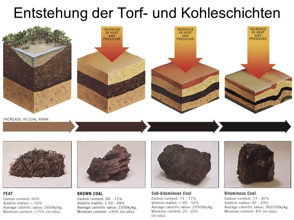 Hydrothermale Karbonisierung Verfahren zur Herstellung von Braunkohle, Synthesegasen, Erdöl-Vorstufen und Humus aus Biomasse.