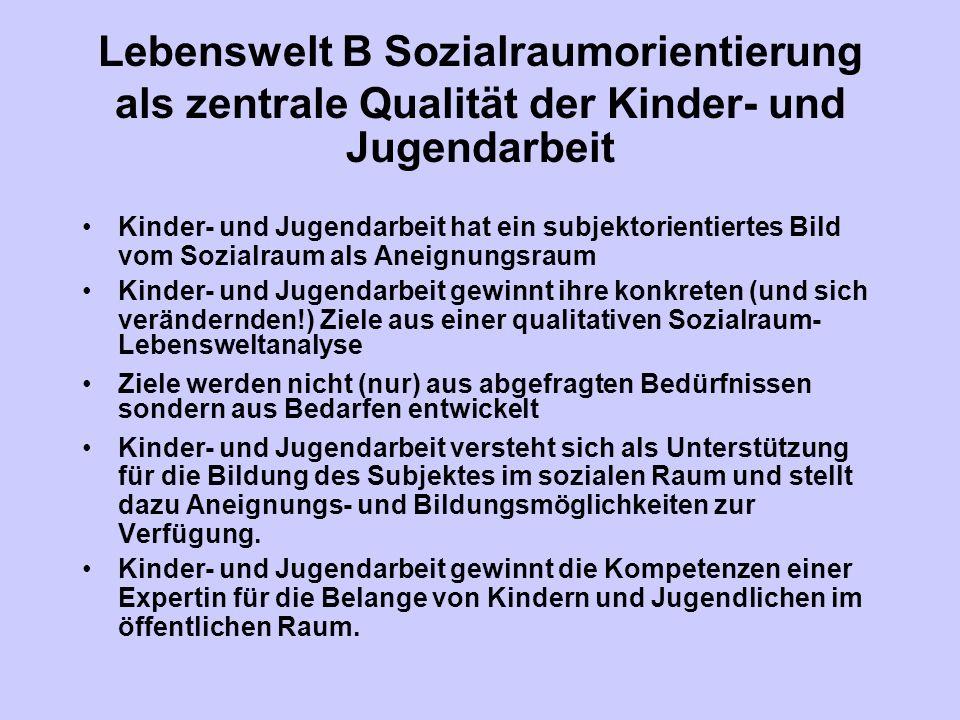 Lebenswelt B Sozialraumorientierung als zentrale Qualität der Kinder- und Jugendarbeit Kinder- und Jugendarbeit hat ein subjektorientiertes Bild vom S