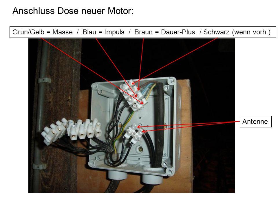 Grün/Gelb = Masse / Blau = Impuls / Braun = Dauer-Plus / Schwarz (wenn vorh.) Anschluss Dose neuer Motor: Antenne