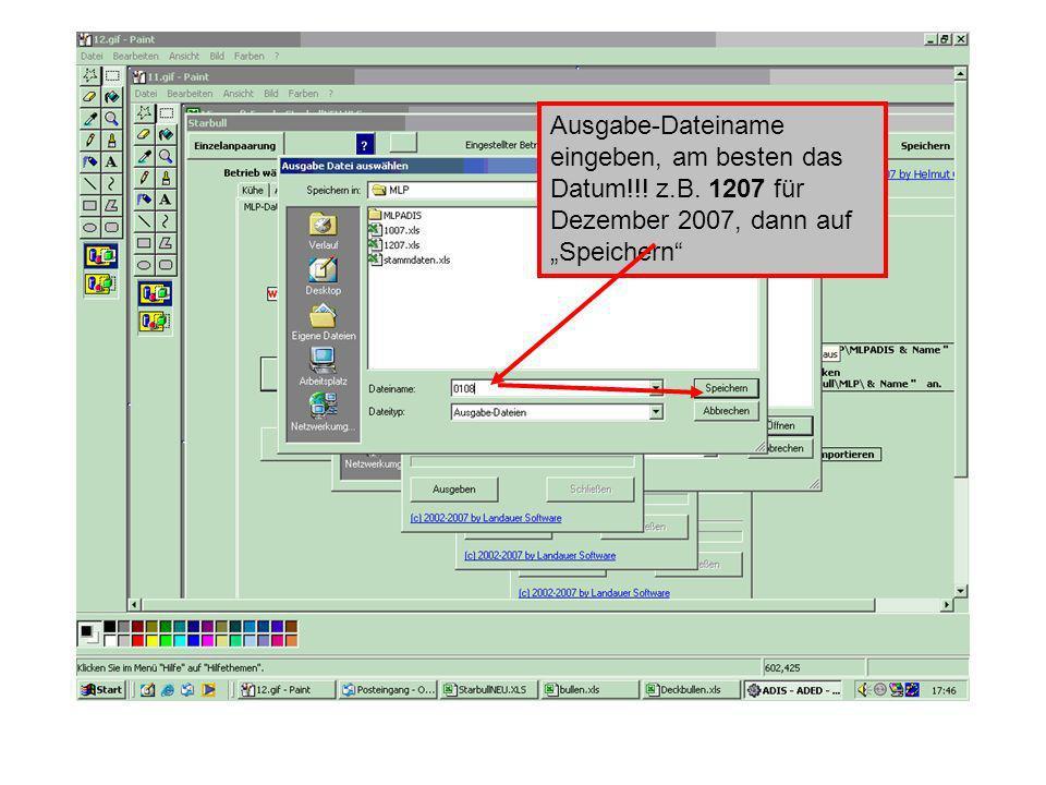 Ausgabe-Dateiname eingeben, am besten das Datum!!! z.B. 1207 für Dezember 2007, dann auf Speichern