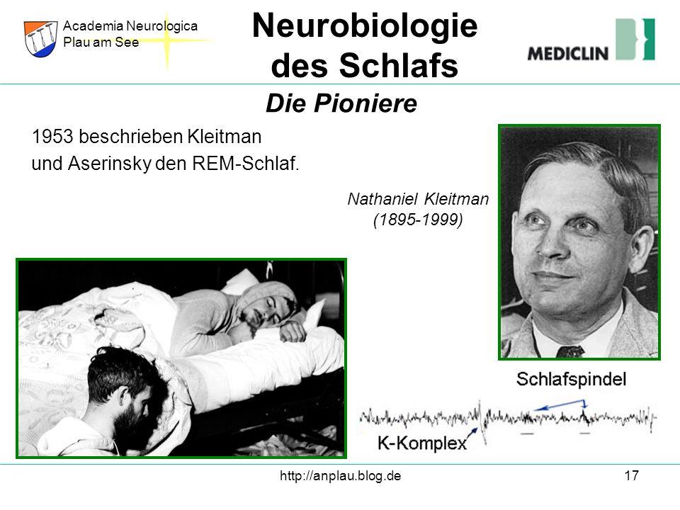 http://anplau.blog.de17 1953 beschrieben Kleitman und Aserinsky den REM-Schlaf. Academia Neurologica Plau am See Neurobiologie des Schlafs Die Pionier