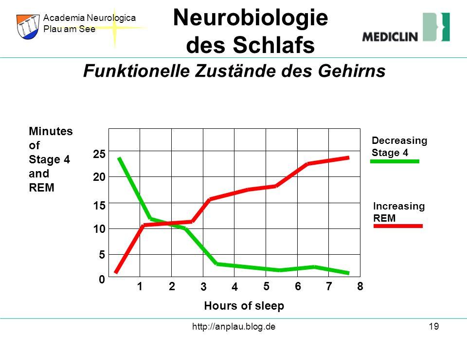 http://anplau.blog.de19 Academia Neurologica Plau am See Neurobiologie des Schlafs Funktionelle Zustände des Gehirns Hours of sleep Minutes of Stage 4