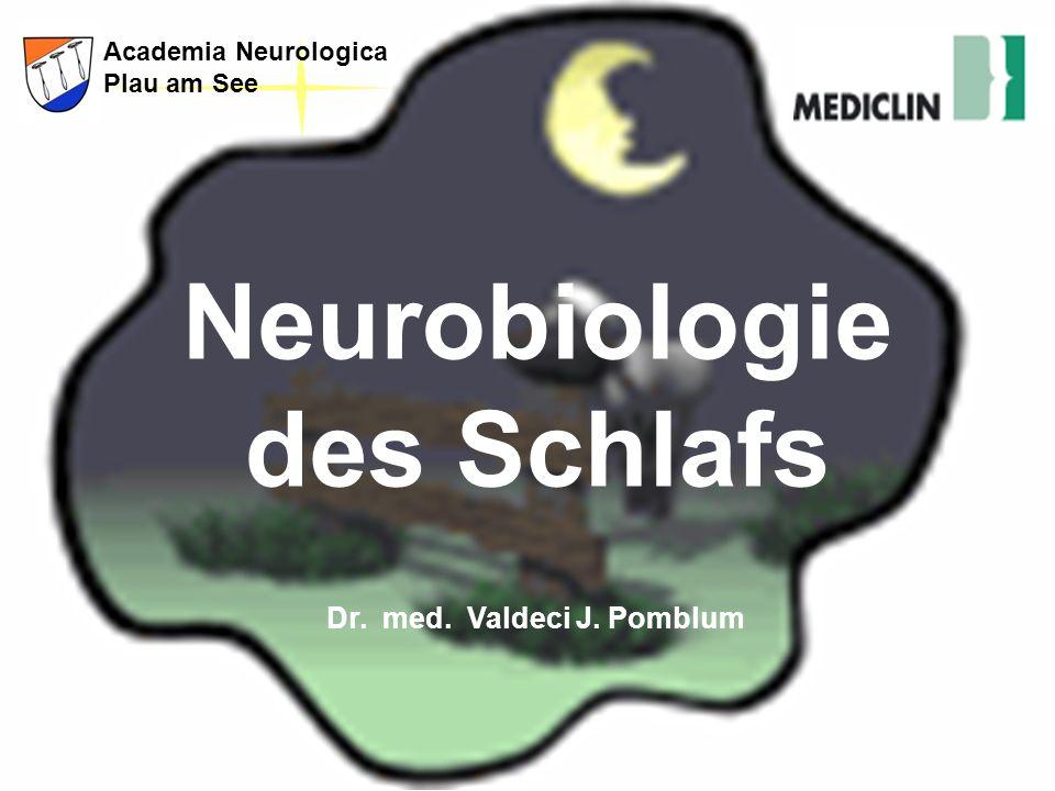 http://anplau.blog.de2 Dienstbesprechung Bitte nicht stören! Academia Neurologica Plau am See Neurobiologie des Schlafs Neurobiologia do Sono Neurobio