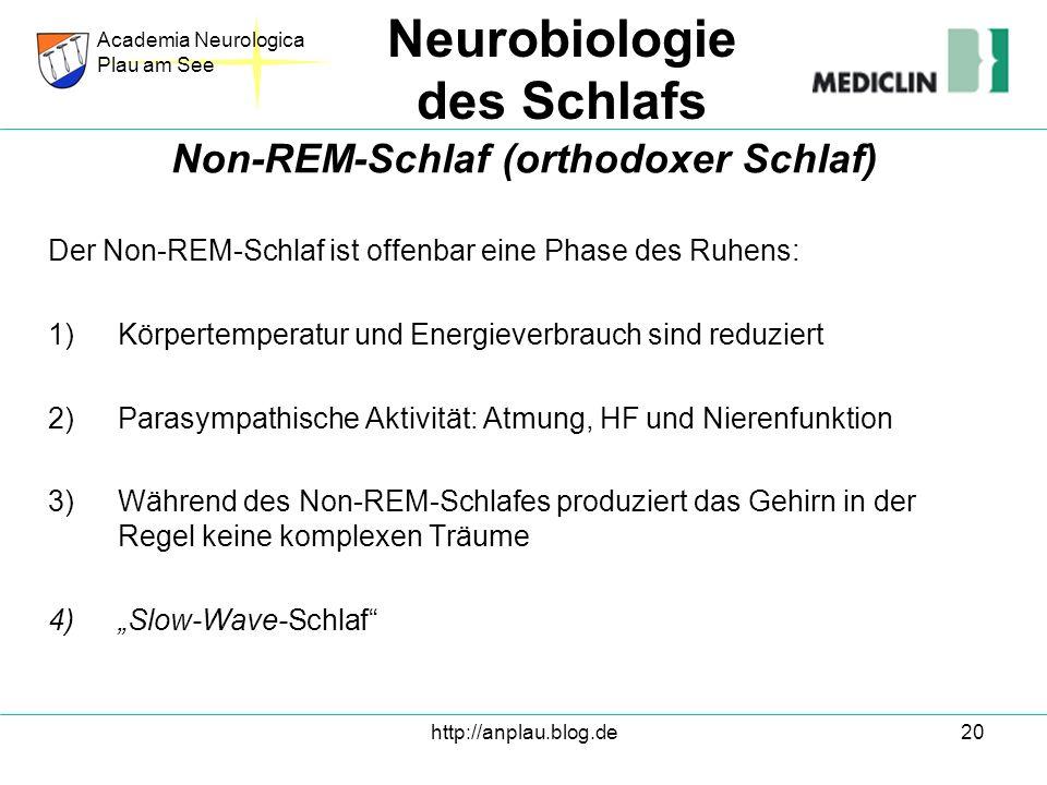 http://anplau.blog.de20 Der Non-REM-Schlaf ist offenbar eine Phase des Ruhens: 1)Körpertemperatur und Energieverbrauch sind reduziert 2)Parasympathisc