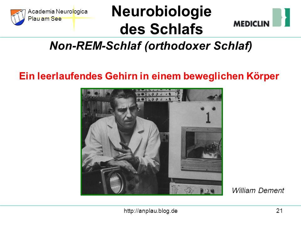 http://anplau.blog.de21 Ein leerlaufendes Gehirn in einem beweglichen Körper Academia Neurologica Plau am See Neurobiologie des Schlafs Non-REM-Schlaf