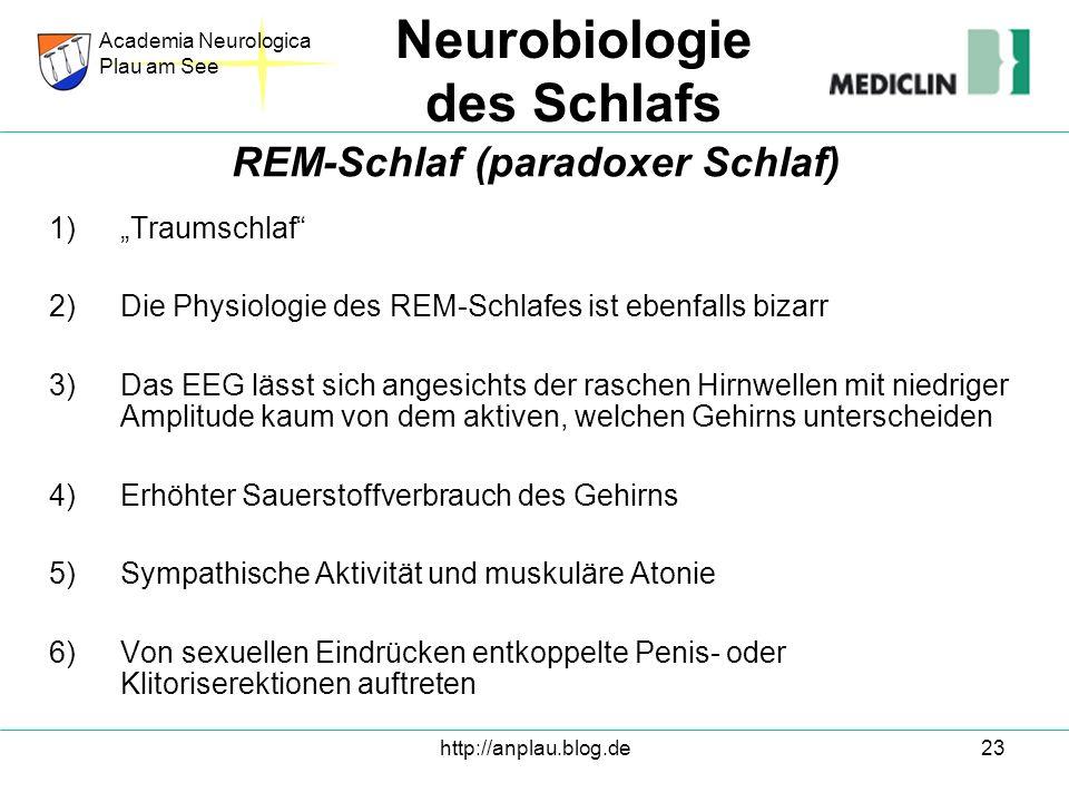 http://anplau.blog.de23 1)Traumschlaf 2)Die Physiologie des REM-Schlafes ist ebenfalls bizarr 3)Das EEG lässt sich angesichts der raschen Hirnwellen m