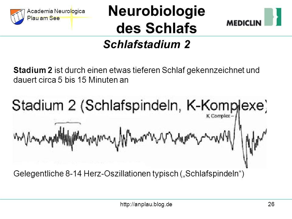 http://anplau.blog.de26 Stadium 2 ist durch einen etwas tieferen Schlaf gekennzeichnet und dauert circa 5 bis 15 Minuten an Gelegentliche 8-14 Herz-Os