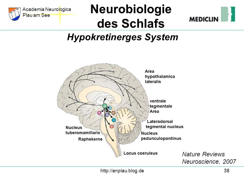 http://anplau.blog.de38 Academia Neurologica Plau am See Neurobiologie des Schlafs Hypokretinerges System Nature Reviews Neuroscience, 2007