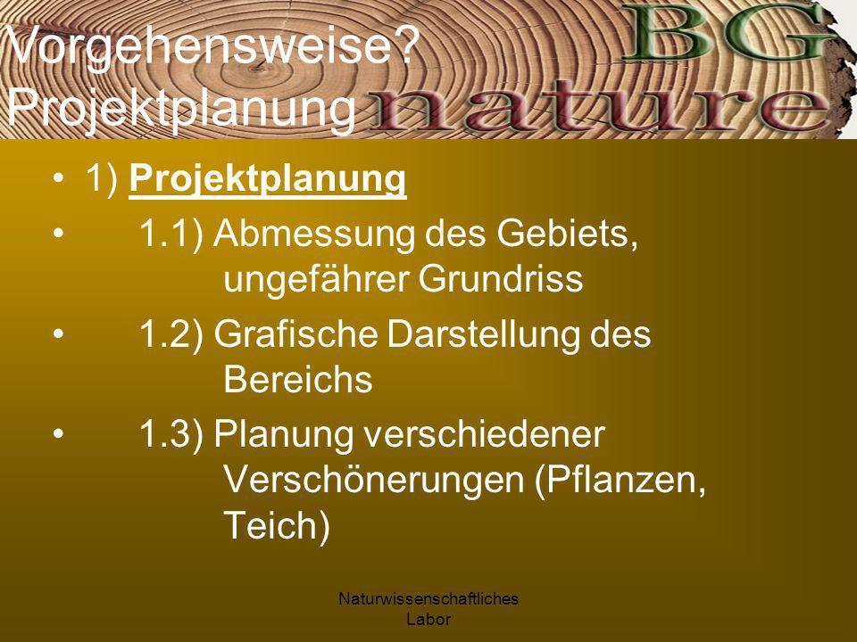 Naturwissenschaftliches Labor 1) Projektplanung 1.1) Abmessung des Gebiets, ungefährer Grundriss 1.2) Grafische Darstellung des Bereichs 1.3) Planung verschiedener Verschönerungen (Pflanzen, Teich) Vorgehensweise.