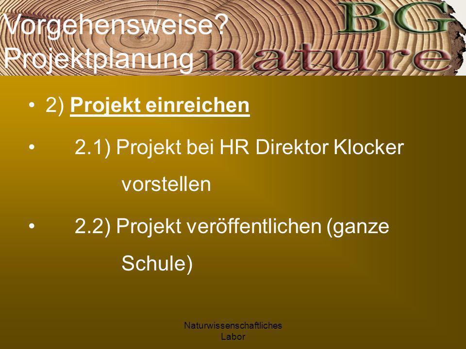 Naturwissenschaftliches Labor 2) Projekt einreichen 2.1) Projekt bei HR Direktor Klocker vorstellen 2.2) Projekt veröffentlichen (ganze Schule) Vorgehensweise.