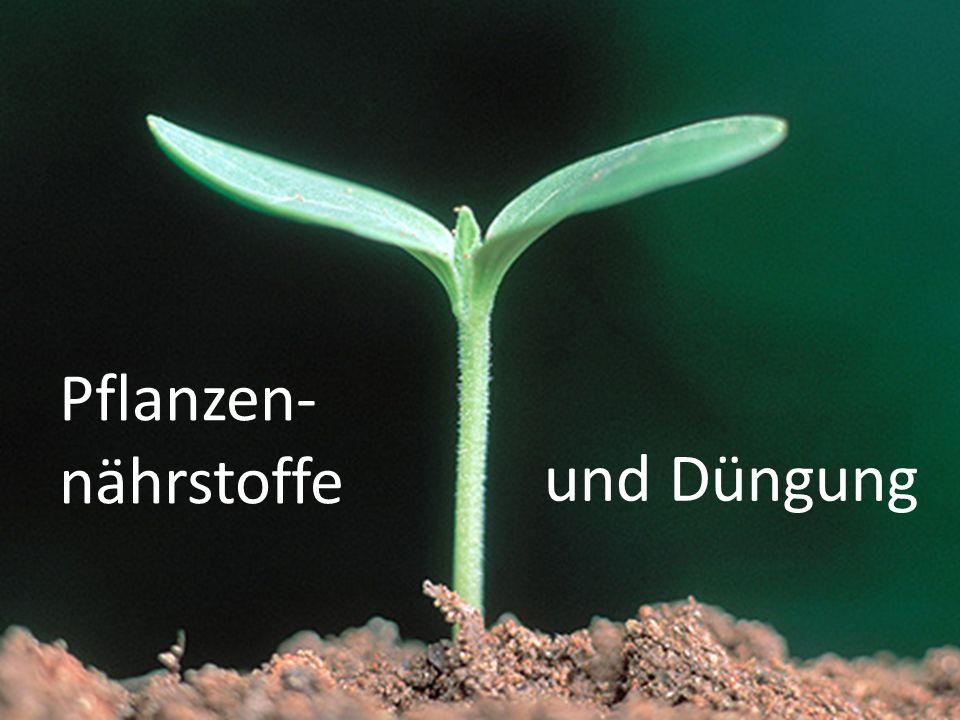 und Düngung Pflanzen- nährstoffe