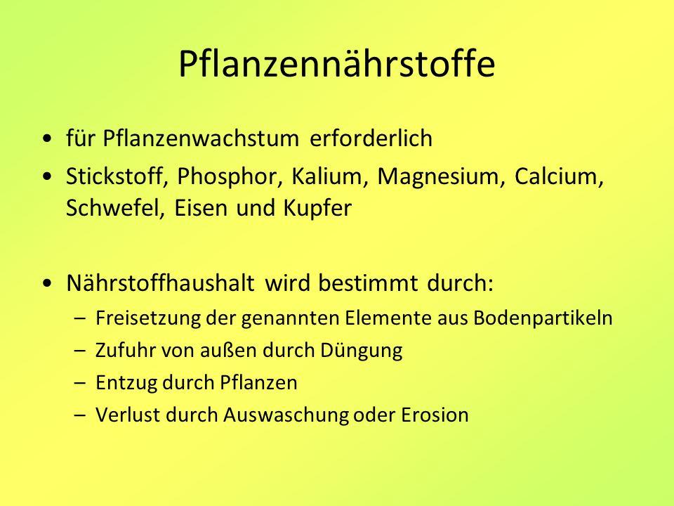 Pflanzennährstoffe für Pflanzenwachstum erforderlich Stickstoff, Phosphor, Kalium, Magnesium, Calcium, Schwefel, Eisen und Kupfer Nährstoffhaushalt wi