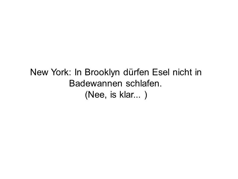 New York: In Brooklyn dürfen Esel nicht in Badewannen schlafen. (Nee, is klar... )