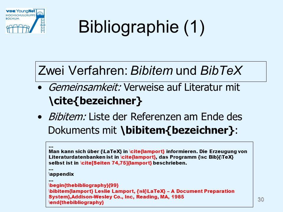 30 Bibliographie (1) Zwei Verfahren: Bibitem und BibTeX … Man kann sich über {\LaTeX} in \cite{lamport} informieren. Die Erzeugung von Literaturdatenb