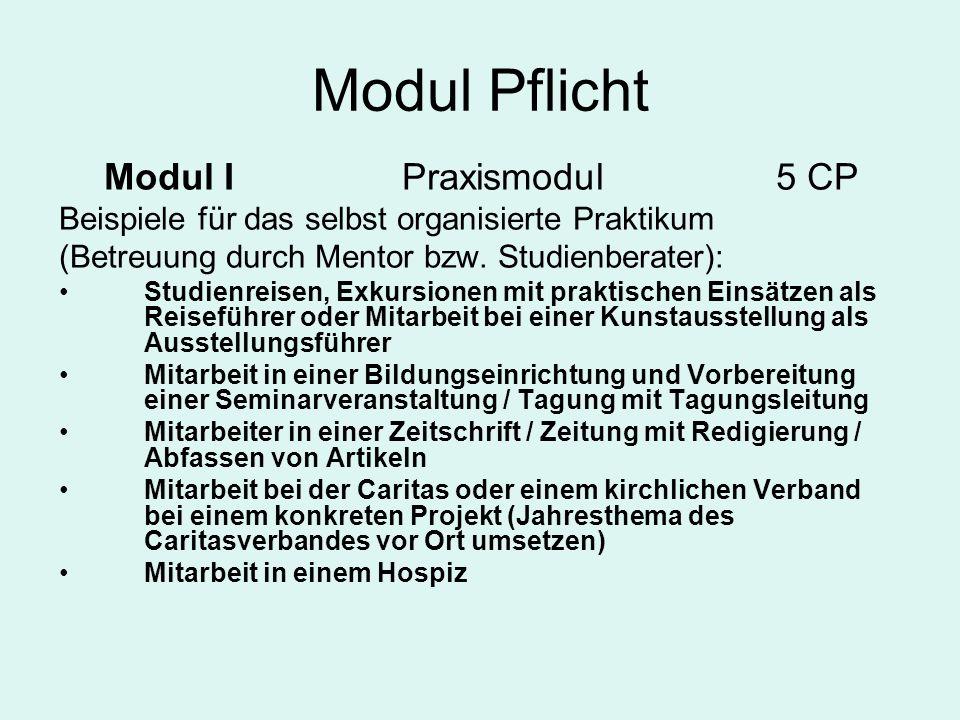 Modul Pflicht Modul I Praxismodul5 CP Beispiele für das selbst organisierte Praktikum (Betreuung durch Mentor bzw. Studienberater): Studienreisen, Exk