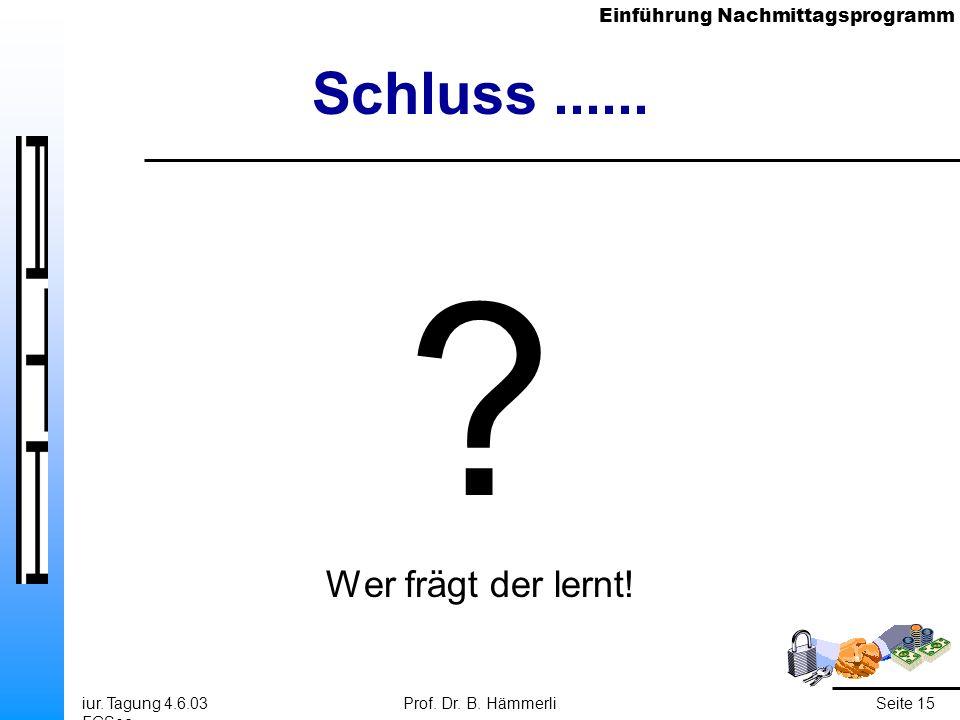 Einführung Nachmittagsprogramm iur. Tagung 4.6.03 FGSec Prof. Dr. B. HämmerliSeite 15 Schluss...... ? Wer frägt der lernt!