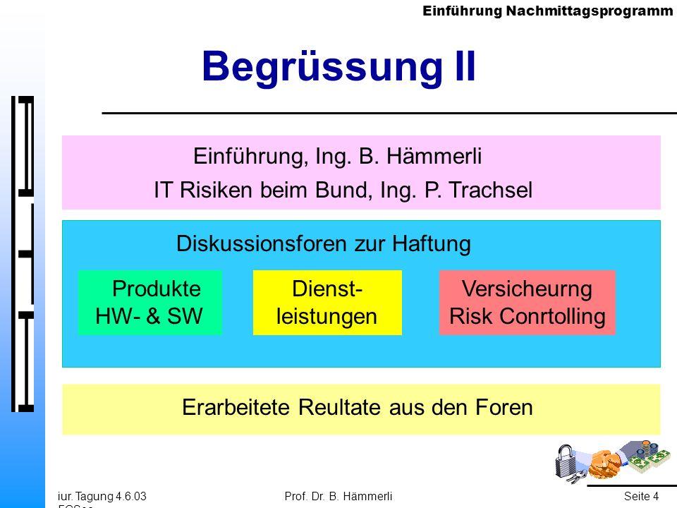 Einführung Nachmittagsprogramm iur. Tagung 4.6.03 FGSec Prof. Dr. B. HämmerliSeite 4 Begrüssung II Einführung, Ing. B. Hämmerli IT Risiken beim Bund,
