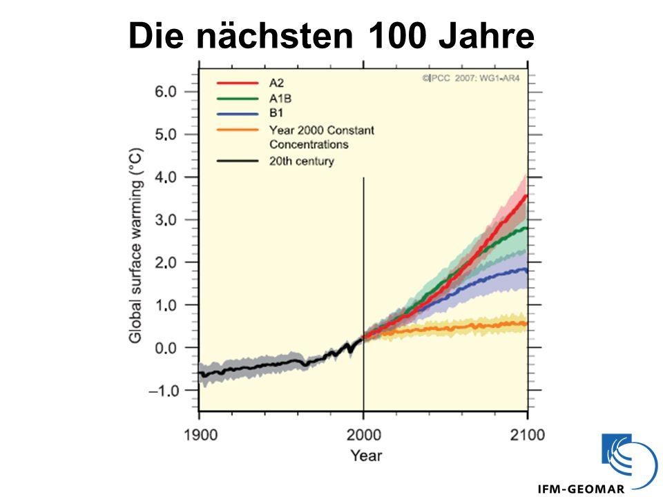 Die nächsten 100 Jahre