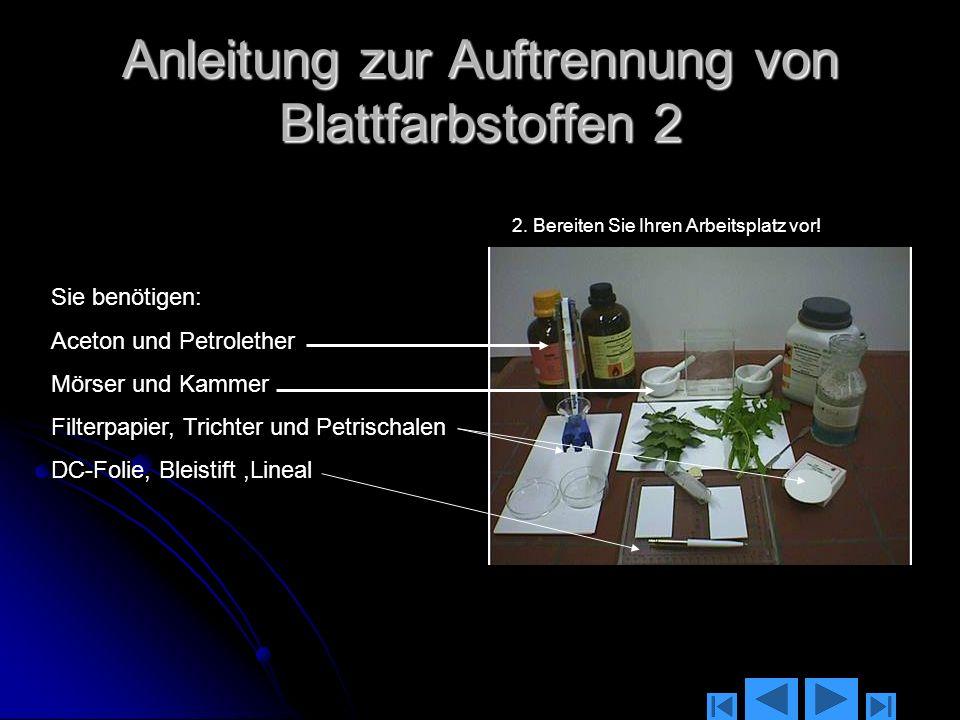 Anleitung zur Auftrennung von Blattfarbstoffen 1 1.Suchen Sie sich von zwei verschiedenen Pflanzen geeignete Blätter!