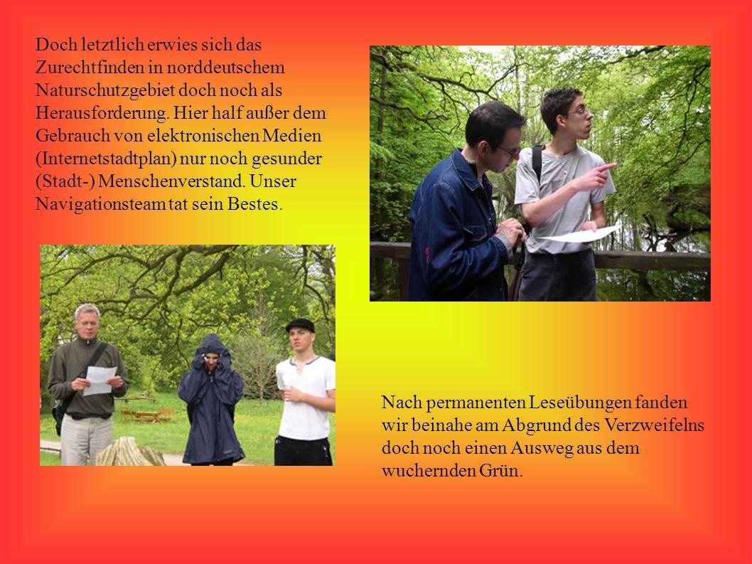 Weiter ging´s dann auf einer spannenden und auch spontanen Entdeckungstour durch die norddeutsche Flora, auf der wir einen Aussichtsturm entdeckten. D