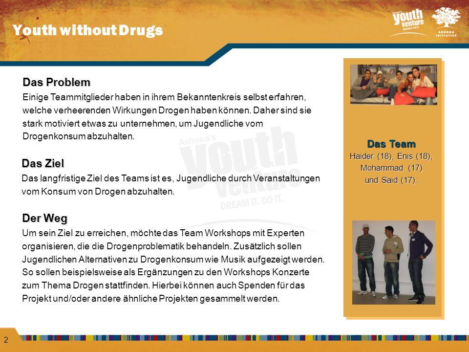 Youth without Drugs 2 Das Problem Einige Teammitglieder haben in ihrem Bekanntenkreis selbst erfahren, welche verheerenden Wirkungen Drogen haben können.
