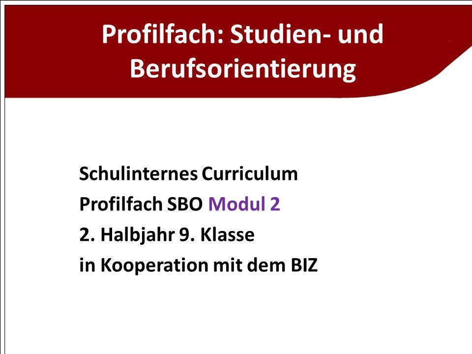 Profilfach: Studien- und Berufsorientierung Schulinternes Curriculum Profilfach SBO Modul 2 2. Halbjahr 9. Klasse in Kooperation mit dem BIZ
