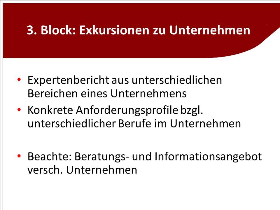 3. Block: Exkursionen zu Unternehmen Expertenbericht aus unterschiedlichen Bereichen eines Unternehmens Konkrete Anforderungsprofile bzgl. unterschied