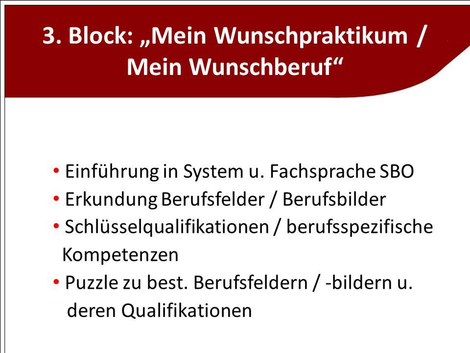 3. Block: Mein Wunschpraktikum / Mein Wunschberuf Einführung in System u. Fachsprache SBO Erkundung Berufsfelder / Berufsbilder Schlüsselqualifikation