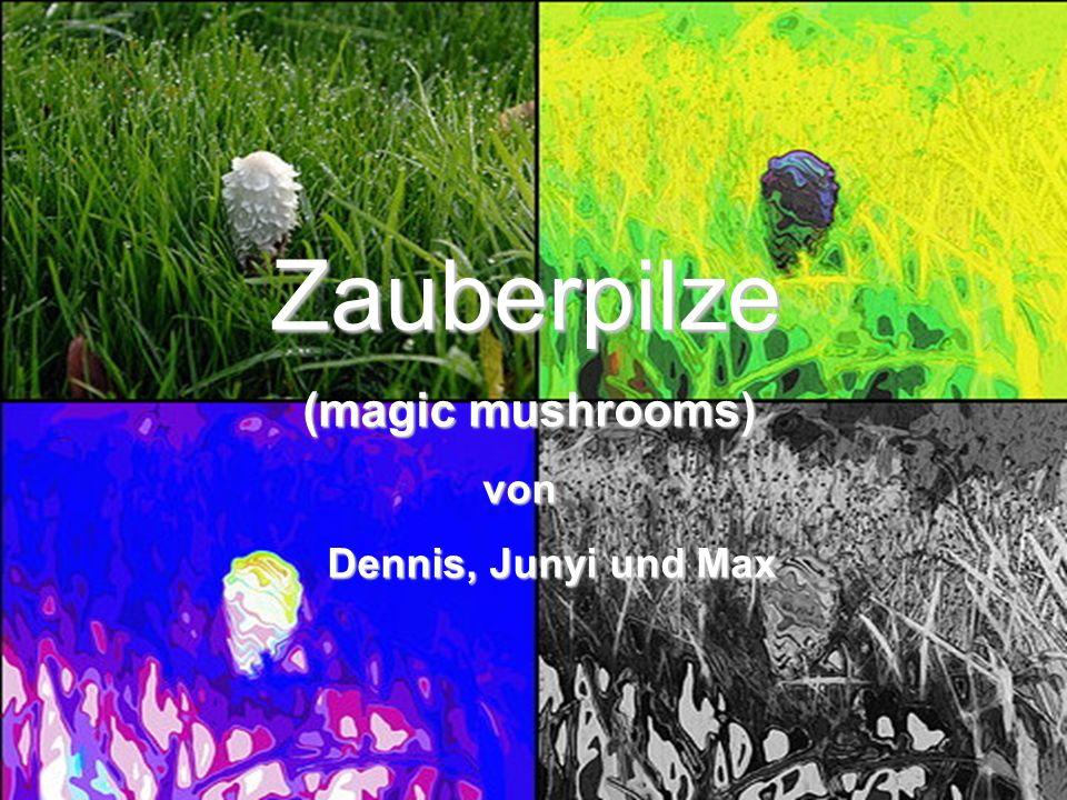 Sponsered by: Teddy with weapons CS Masters Happy Drugs4you Quellen: www.thegooddrugsguide.com www.potseeds.co.uk www.yatesweb.com www.bullybeef.co.uk www.drug-information-resource.com www.zauberpilz.com www.wikipedia.de www.magic-mushrooms.net www.grow.de www.indro-online.de www.pille-palle.net www.amazing-nature.com www.pilzepilze.de www.shroomery.org www.gruene-berlin.de www.school-scout.de www.bndrogenpolitik.de www.paradisi.de www.