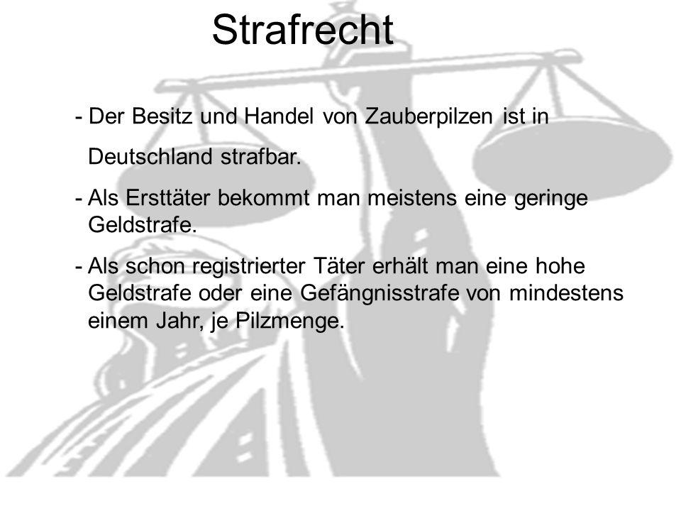 - Der Besitz und Handel von Zauberpilzen ist in Deutschland strafbar.