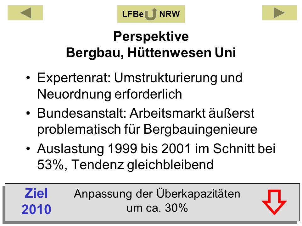 Perspektive Bergbau, Hüttenwesen Uni Expertenrat: Umstrukturierung und Neuordnung erforderlich Bundesanstalt: Arbeitsmarkt äußerst problematisch für Bergbauingenieure Auslastung 1999 bis 2001 im Schnitt bei 53%, Tendenz gleichbleibend LFBe NRW Anpassung der Überkapazitäten um ca.