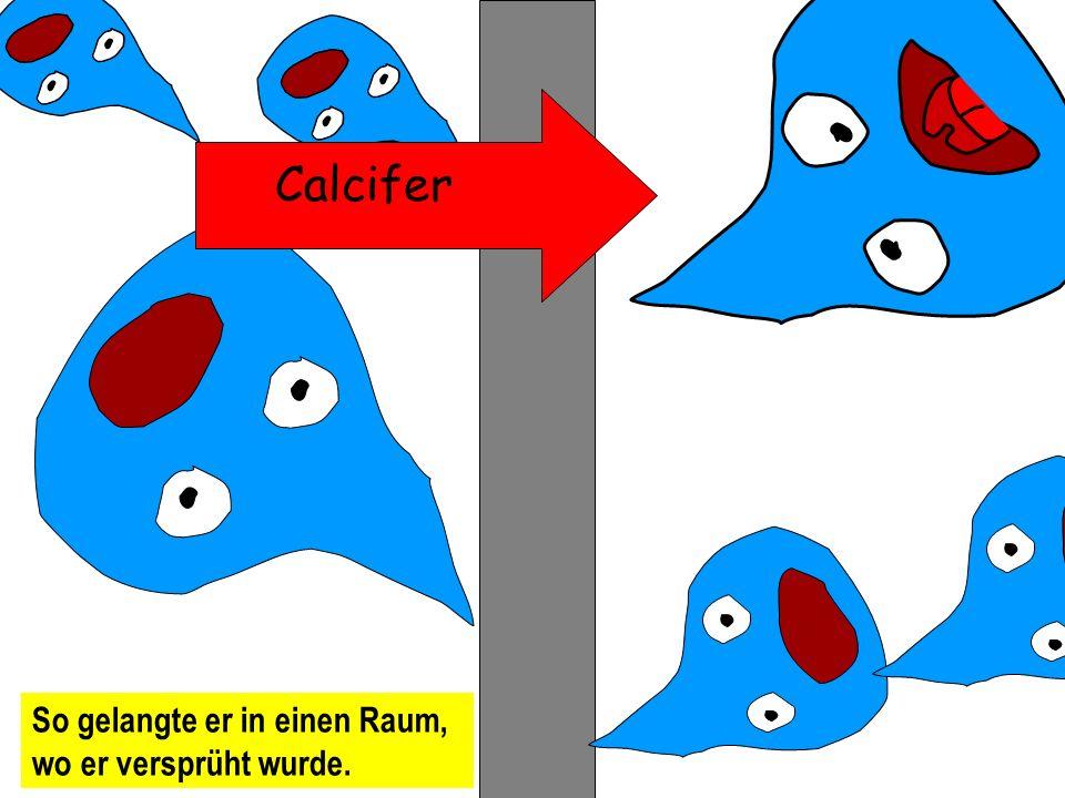 Calcifer könnte irgendwo hier sein und durch viele Rohre gepumpt.